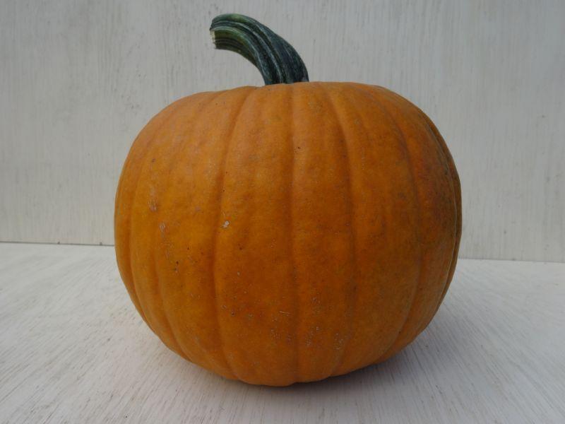 ハロウィンかぼちゃ Jack-o'-Lantern